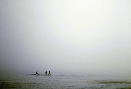 Fog Prophet